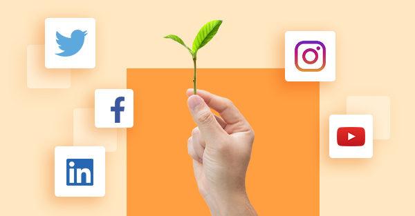 strategie marketing reseaux sociaux
