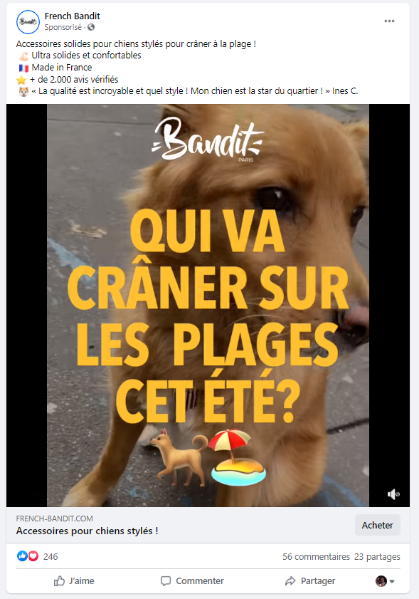 Facebook ads exemple